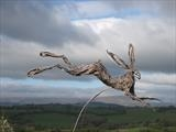 Leaping-Hare